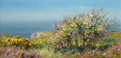 Rex PRESTON - Apple Blossom, Rosemergy, Cornwall